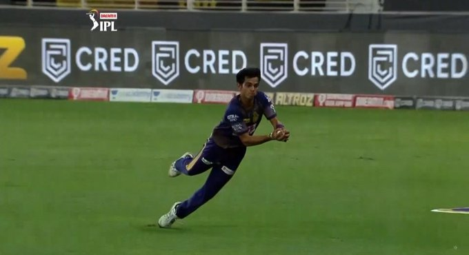 Kamlesh Nagarkoti Takes a Diving Catch to Dismiss Jofra Archer